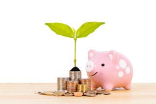 公務員に向いている資産運用とお金の増やし方