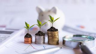 初心者が始めやすい資産運用の種類と注意点を解説